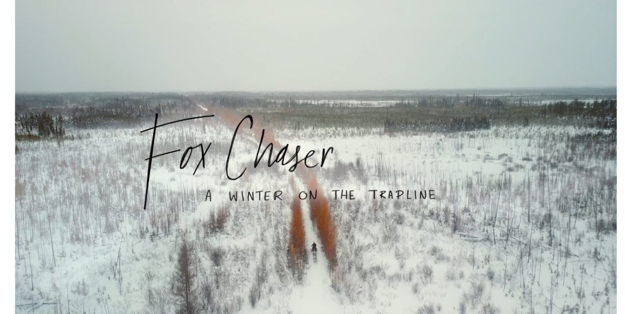 Watch Fox Chaser