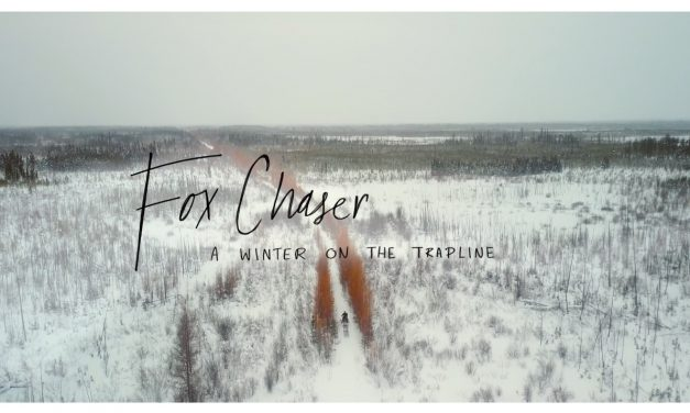 Watch Fox Chaser